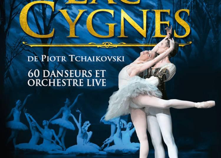 Le Lac Des Cygnes à Paris 15ème