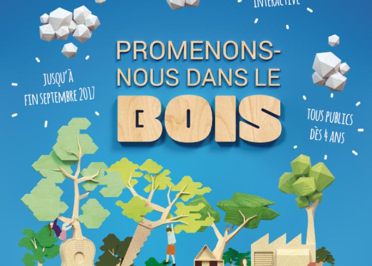 Promenons-nous dans le bois � Vitry sur Seine