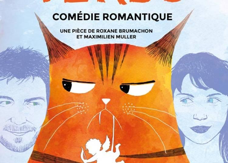 Chat Perdu � Paris 2�me
