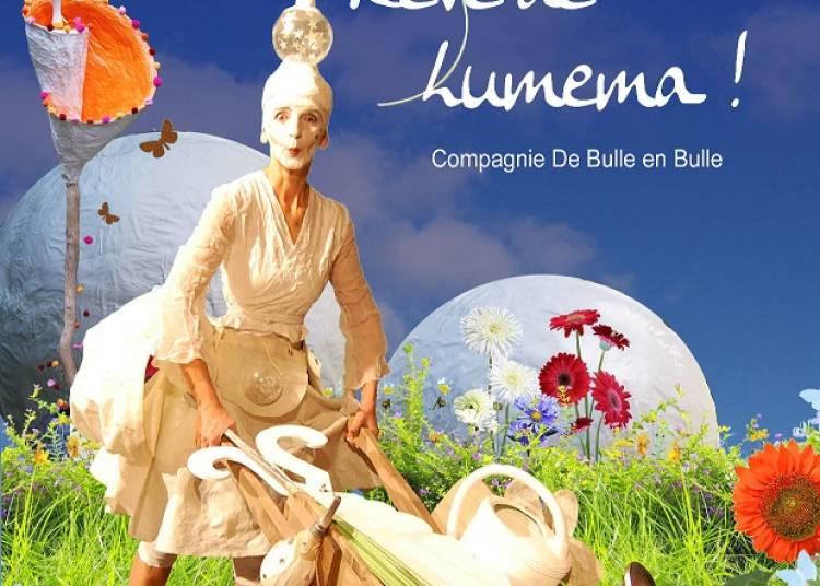 On a volé la bulle de rêve de Lumema à Dijon