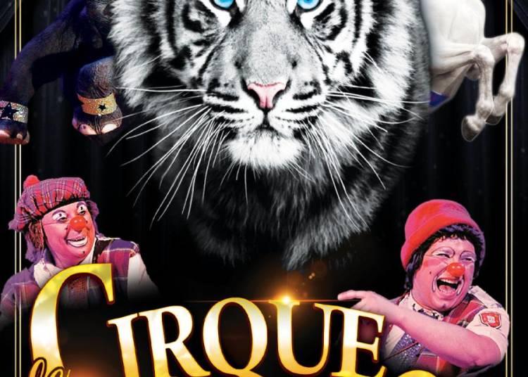 Réveillon De La Saint Sylvestre, Le Cirque Sur Son 31 à Toulouse