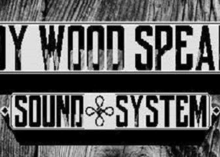 Woody Wood Speakers Project // W.w.s Crew + Guests // � Paris 1er