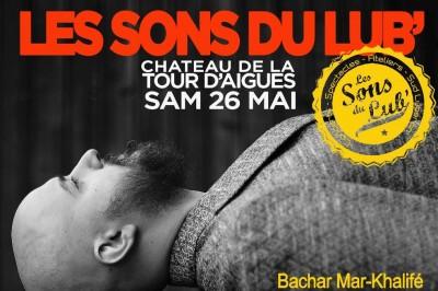 Festival Les Sons du Lub' à La Tour d'Aigues