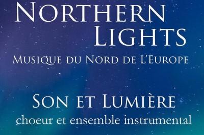 Son et Lumière - Northern Lights à Nancy