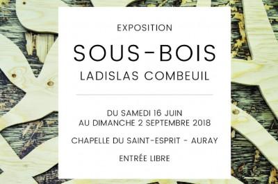 Exposition Sous-Bois à Auray