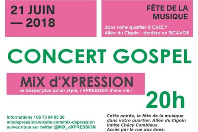 Mix d'xpression (fête de la musique 2018)  à Checy