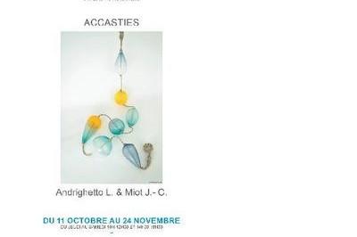 Exposition accasties à Saint Sever