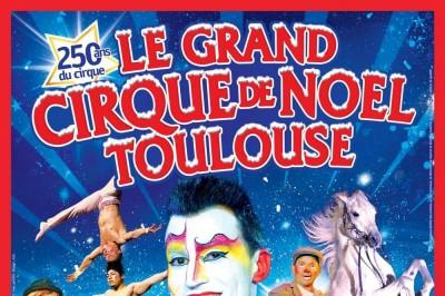 Cirque De Noel - Toulouse