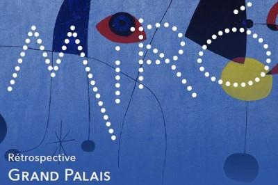 Miró - Projection Commentée à Paris 8ème