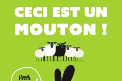 Ceci Est Un Mouton ! …bêêêh Oui ! à Muret