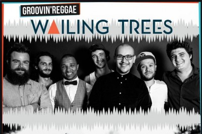 Wailing Trees // No Money Kids à Saint Maurice l'Exil
