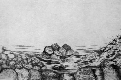 Odyssée à Randonnai