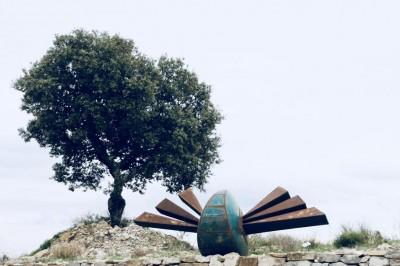 Sculptures en Vigne à La Liviniere
