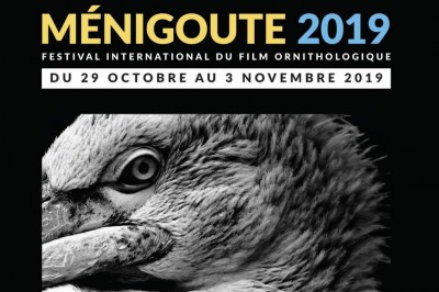 Festival International du Film Ornithologique 2019