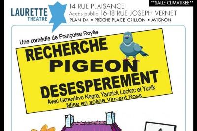 Recherche Pigeon Désespérément à Avignon
