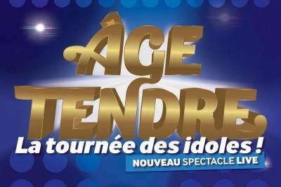 Age Tendre - La Tournée des Idoles à Niort