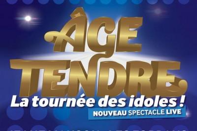 Age Tendre - la Tournée des Idoles à Tours