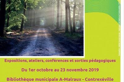 Rencontre avec la Forêt à Contrexeville