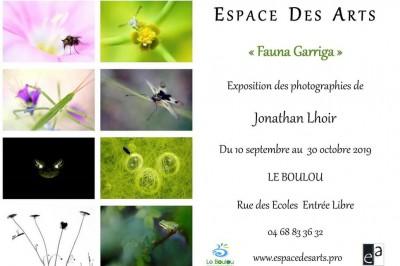 Fauna Garriga à Le Boulou