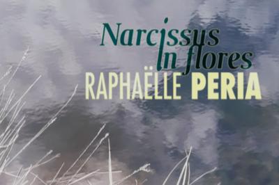Narcissus in flores à Flixecourt