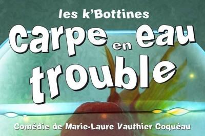 Carpe en eaux troubles à Dijon