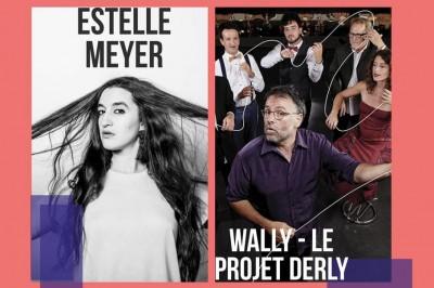 Printival Boby Lapointe - Wally - Projet Derli/Estelle Meyer à Pezenas