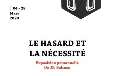 Le Hasard et la Nécessité - Exposition personnelle à Strasbourg