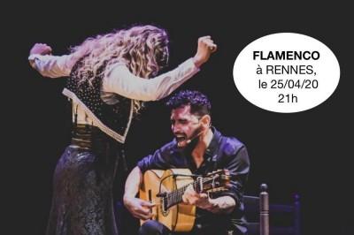 Flamenco sin sulfitos à Rennes