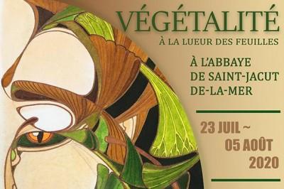 Exposition: Végétalité, à la lueur des feuilles à Saint Jacut de la Mer