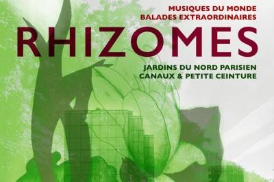 Festival Rhizomes 2020