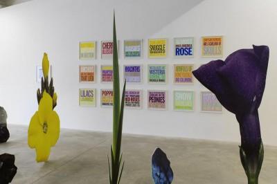 Exposition « Narcisse ou la floraison des mondes » à Bordeaux
