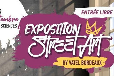 Exposition Street Art by Vatel Bordeaux - 2ème édition