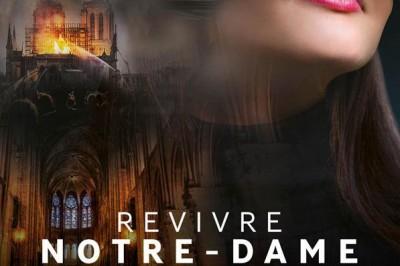 Flyview - Revivre Notre-Dame à Paris 2ème