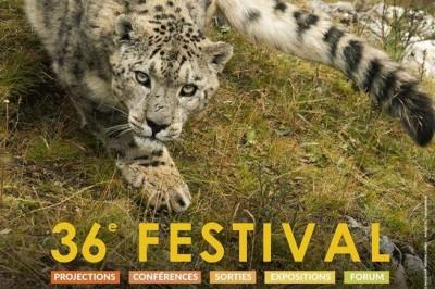 Festival International du Film Ornithologique 2020