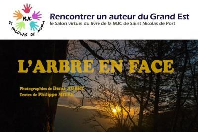 Rencontrer un auteur du Grand Est à Saint Nicolas de Port