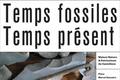 Exposition Temps Fossiles Temps Présent à Castellane
