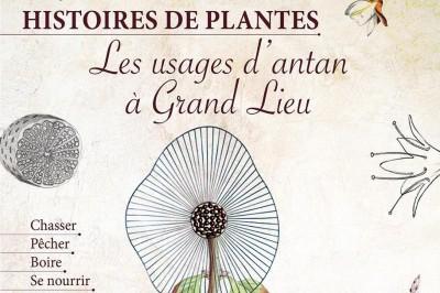 Histoires de plantes, les usages d'antan à Grand Lieu à La Chevroliere