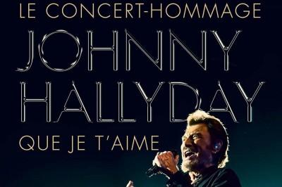 Johnny Hallyday : Que Je t'aime ! Concert Hommage à Paris 12ème