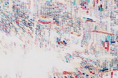 Naoko Sekine | | Ligne ? Couleur ? Image à Paris 3ème