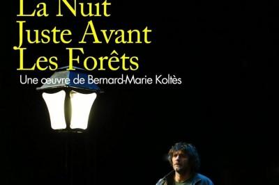 La Nuit Juste Avant Les Forêts à Meaux