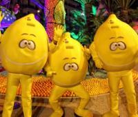 La Fête du Citron en images