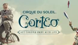 Cirque du soleil : les plus beaux spectacles en ligne