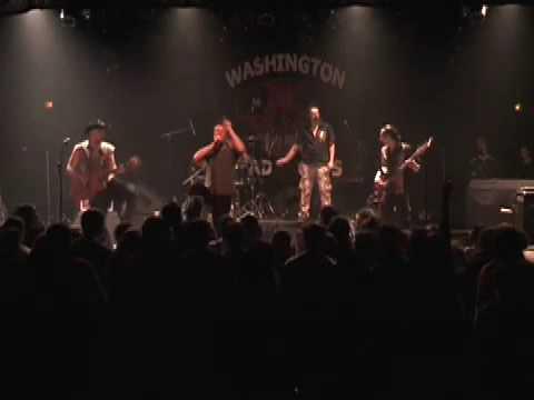 The Washington Dead Cats