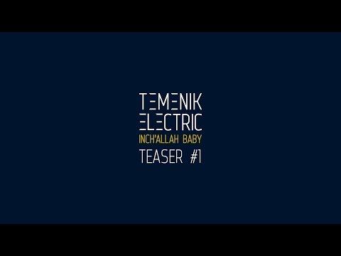 Temenik Electric