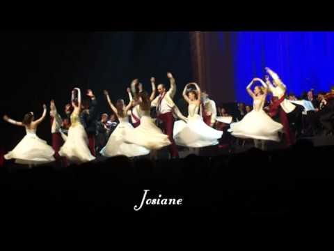 Les ballets Viennois Pannonia